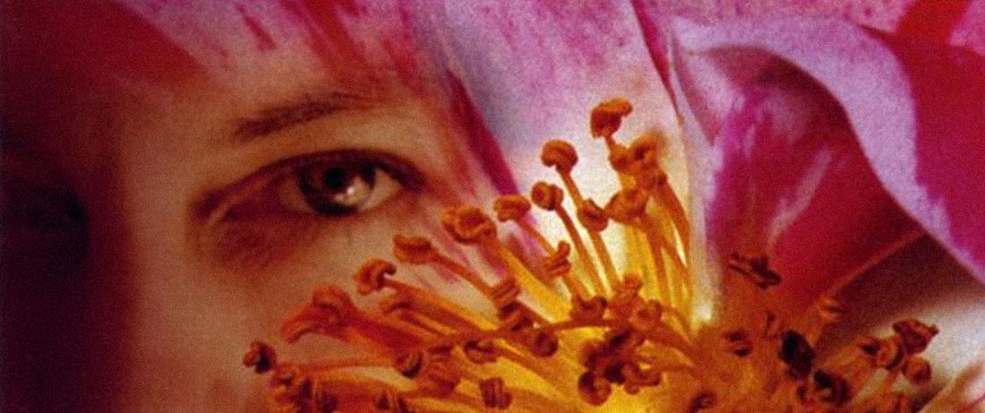 June Tabor - Rosa Mundi