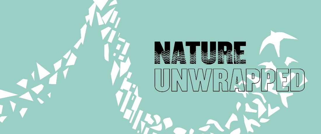 Wild Singing: Nature Unwrapped
